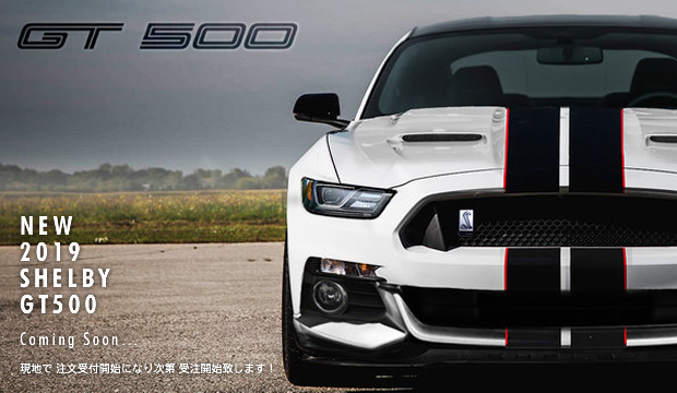 New 2019 SHELBY GT500